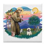 St Francis #2/ Cairn T (#14) Tile Coaster