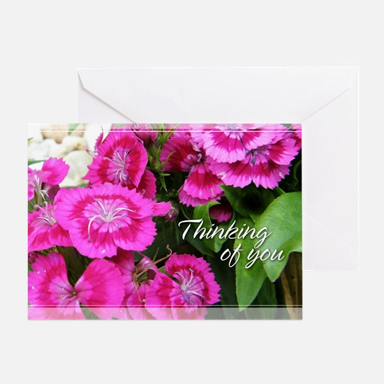 Sweet Williams/Dianthus Thinking of You Card 5x7