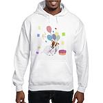 JRT Happy Birthday Gifts Hooded Sweatshirt