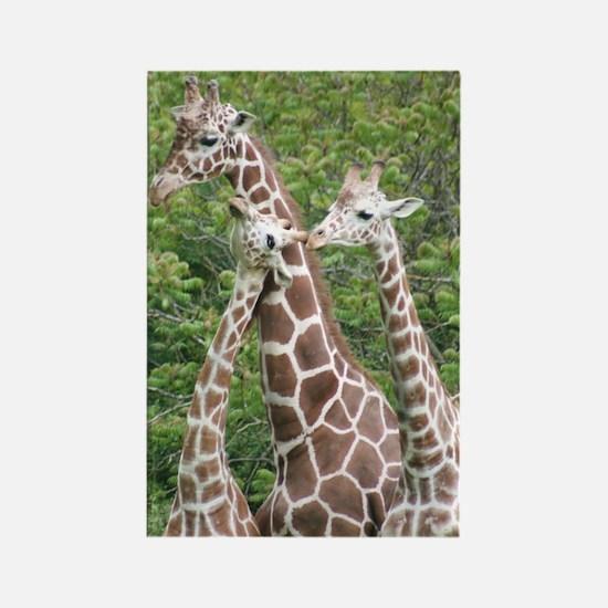Rectangle Magnet-Giraffes
