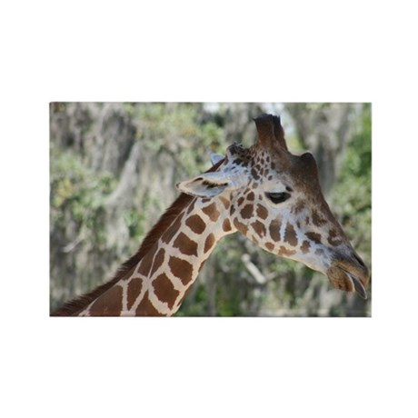Rectangle Magnet-Giraffe
