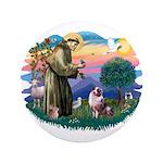 St Francis #2/ Aus Shep (merle) 3.5