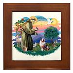 St Francis #2/ Aus Shep (merle) Framed Tile