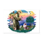 St Francis #2/ Aus Shep (merle) Mini Poster Print