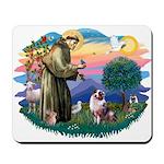 St Francis #2/ Aus Shep (merle) Mousepad