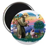 St Francis #2/ Aus Shep (merle) 2.25