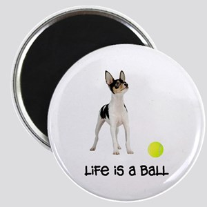 Toy Fox Terrier Life Magnet