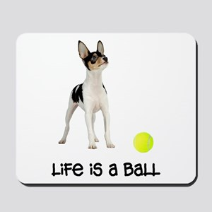 Toy Fox Terrier Life Mousepad