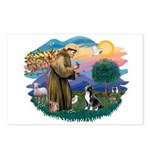 St Francis #2/ Amer Staff. Postcards (Package of 8