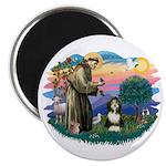 St Francis #2/ Beardie (#8) Magnet