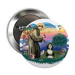 St Francis #2/ Beardie (#8) 2.25