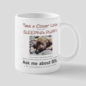 Take a Closer Look Mug