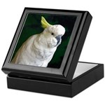 Bird Keepsake Box