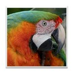 macaw Tile Coaster