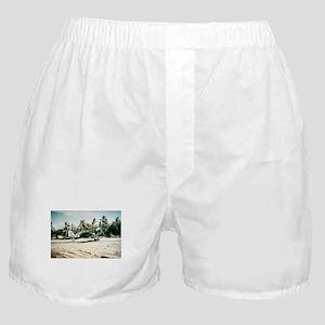 Pacific Corsair Boxer Shorts