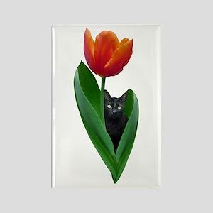 Tulip Cat Rectangle Magnet