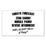 Todays Forecast Sticker (Rectangle)