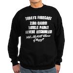Todays Forecast Sweatshirt (dark)