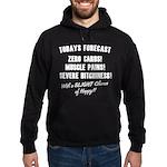 Todays Forecast Hoodie (dark)