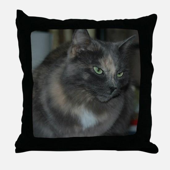 Blue Cream Throw Pillow
