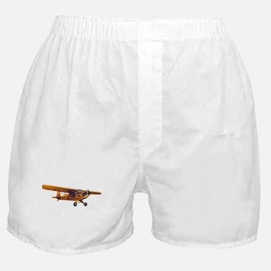 Lone Cub Boxer Shorts