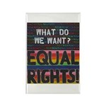 Equal Rights Now Rectangle Magnet (10 Magnets