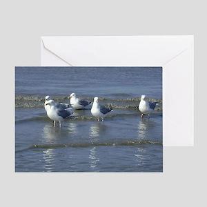 Seagull Heaven Greeting Card