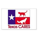 TexasCARESPocket Sticker