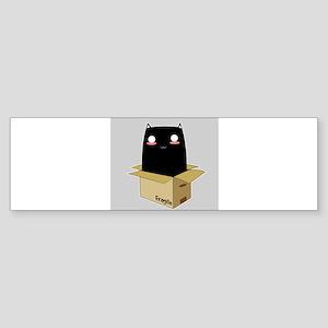 Black Cat in a Box Bumper Sticker