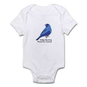 0335eaa30 Audubon Painted Bunting Bird Baby Clothes   Accessories - CafePress