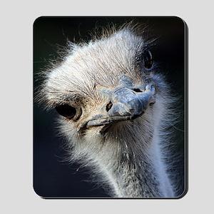 Ostrich Mousepad