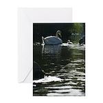 Baby Swan Greeting Card