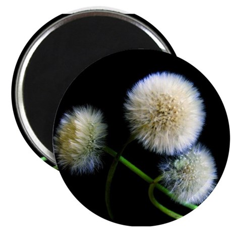 """Make a Wish 2.25"""" Magnet (10 pack)"""