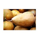 Bosc Pear Mini Poster Print