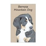Bernese Mountain Dog Puppy Mini Poster Print