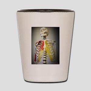 Skeleton Named Bob Shot Glass