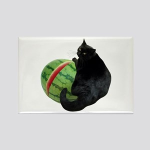 Cat with Watermelon Rectangle Magnet