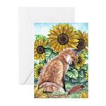 Sun Fox Greeting Cards (Pk of 20)