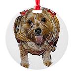 cutie poo Ornament