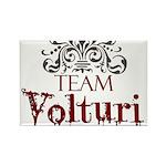 Team Volturi Rectangle Magnet (100 pack)