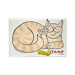 Orange Tabby ASL Kitty Rectangle Magnet
