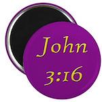 Bible Verse (John 3:16) Magnet
