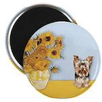 Sunflowers / Yorkie #17 2.25