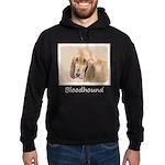 Bloodhound Hoodie (dark)