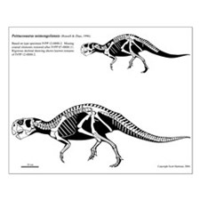 20 x 16 Psittacosaurus poster