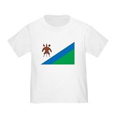 Lesotho Flag T