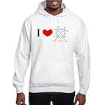 Molecularshirts.com Heme Hooded Sweatshirt