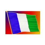 NPA Rectangle Magnet (100 pack)