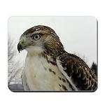 Hawk Mousepad