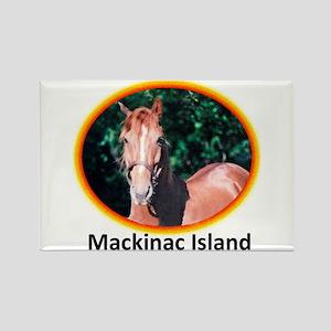 Island Horses Rectangle Magnet